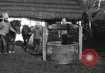 Image of Russian Cossacks Russia, 1914, second 3 stock footage video 65675072424