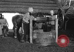 Image of Russian Cossacks Russia, 1914, second 5 stock footage video 65675072424