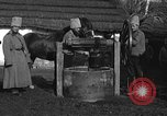 Image of Russian Cossacks Russia, 1914, second 14 stock footage video 65675072424