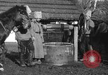 Image of Russian Cossacks Russia, 1914, second 20 stock footage video 65675072424