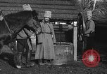 Image of Russian Cossacks Russia, 1914, second 22 stock footage video 65675072424