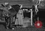 Image of Russian Cossacks Russia, 1914, second 23 stock footage video 65675072424