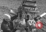 Image of Japanese paper bomb balloon Pacific Theater, 1945, second 21 stock footage video 65675072436