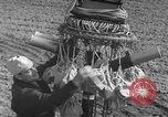 Image of Japanese paper bomb balloon Pacific Theater, 1945, second 28 stock footage video 65675072436
