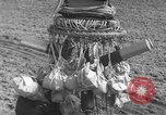 Image of Japanese paper bomb balloon Pacific Theater, 1945, second 32 stock footage video 65675072436