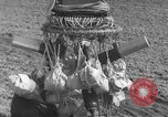 Image of Japanese paper bomb balloon Pacific Theater, 1945, second 33 stock footage video 65675072436