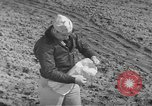 Image of Japanese paper bomb balloon Pacific Theater, 1945, second 54 stock footage video 65675072436