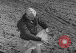 Image of Japanese paper bomb balloon Pacific Theater, 1945, second 56 stock footage video 65675072436