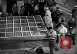Image of largest pie Talent Oregon USA, 1936, second 20 stock footage video 65675072521