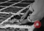 Image of largest pie Talent Oregon USA, 1936, second 22 stock footage video 65675072521
