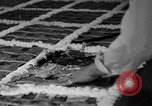 Image of largest pie Talent Oregon USA, 1936, second 23 stock footage video 65675072521