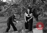 Image of Young women farmers New Hebron Mississippi USA, 1936, second 13 stock footage video 65675072526