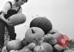 Image of Young women farmers New Hebron Mississippi USA, 1936, second 31 stock footage video 65675072526