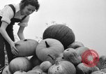 Image of Young women farmers New Hebron Mississippi USA, 1936, second 32 stock footage video 65675072526