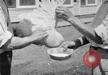 Image of chicken raising United States USA, 1919, second 52 stock footage video 65675072551