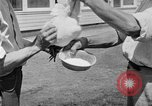 Image of chicken raising United States USA, 1919, second 62 stock footage video 65675072551