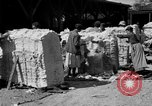 Image of cotton shipping New York United States USA, 1919, second 24 stock footage video 65675072557