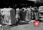 Image of cotton shipping New York United States USA, 1919, second 27 stock footage video 65675072557