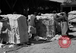 Image of cotton shipping New York United States USA, 1919, second 28 stock footage video 65675072557