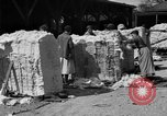 Image of cotton shipping New York United States USA, 1919, second 32 stock footage video 65675072557