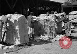 Image of cotton shipping New York United States USA, 1919, second 33 stock footage video 65675072557