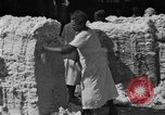 Image of cotton shipping New York United States USA, 1919, second 36 stock footage video 65675072557