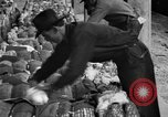 Image of cotton shipping New York United States USA, 1919, second 48 stock footage video 65675072557