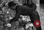 Image of cotton shipping New York United States USA, 1919, second 49 stock footage video 65675072557