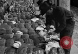 Image of cotton shipping New York United States USA, 1919, second 55 stock footage video 65675072557