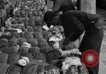 Image of cotton shipping New York United States USA, 1919, second 58 stock footage video 65675072557