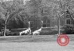 Image of Fordham University New York United States USA, 1962, second 45 stock footage video 65675072590