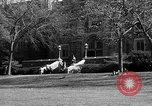Image of Fordham University New York United States USA, 1962, second 46 stock footage video 65675072590
