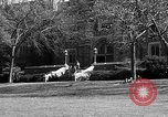 Image of Fordham University New York United States USA, 1962, second 47 stock footage video 65675072590