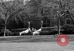 Image of Fordham University New York United States USA, 1962, second 48 stock footage video 65675072590
