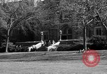 Image of Fordham University New York United States USA, 1962, second 49 stock footage video 65675072590