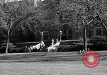 Image of Fordham University New York United States USA, 1962, second 51 stock footage video 65675072590