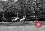 Image of Fordham University New York United States USA, 1962, second 53 stock footage video 65675072590