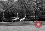 Image of Fordham University New York United States USA, 1962, second 54 stock footage video 65675072590