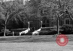 Image of Fordham University New York United States USA, 1962, second 56 stock footage video 65675072590