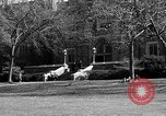 Image of Fordham University New York United States USA, 1962, second 57 stock footage video 65675072590