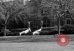 Image of Fordham University New York United States USA, 1962, second 58 stock footage video 65675072590