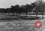 Image of Classic National Stock Car Road Race Elgin Illinois USA, 1933, second 56 stock footage video 65675072675