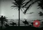 Image of Camels in Muslim lands of  Eurasia and Africa Middle East, 1936, second 43 stock footage video 65675072698