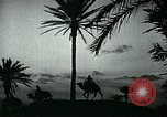 Image of Camels in Muslim lands of  Eurasia and Africa Middle East, 1936, second 44 stock footage video 65675072698