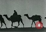 Image of Camels in Muslim lands of  Eurasia and Africa Middle East, 1936, second 59 stock footage video 65675072698