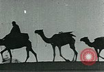 Image of Camels in Muslim lands of  Eurasia and Africa Middle East, 1936, second 60 stock footage video 65675072698