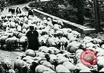 Image of Nomadic life in Arabia Middle East, 1936, second 22 stock footage video 65675072699