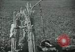 Image of Ancient methods of agriculture in the Middle East Middle East, 1936, second 18 stock footage video 65675072700