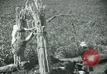 Image of Ancient methods of agriculture in the Middle East Middle East, 1936, second 20 stock footage video 65675072700