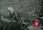 Image of Ancient methods of agriculture in the Middle East Middle East, 1936, second 24 stock footage video 65675072700